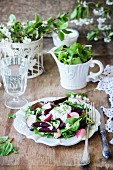 A mixed leaf salad with beetroot and radishes