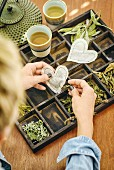 Hand-made heart-shaped teabags