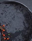 Vogelbeeren auf schwarzem Untergrund