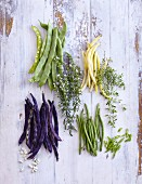 Colourful beans and herbs on a white wooden background