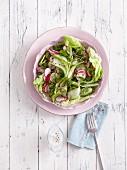 A radish, cucumber, and cress salad - 'Radifix'