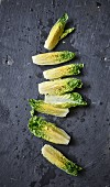 Romaine lettuce hearts on a slate plate