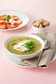 Gemüsesuppe mit Kräutern und Mozzarella