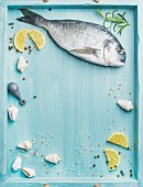 Fresh Sea bream or dorado raw uncooked fish with seasoning and lemon slices over turquoise blue tray background