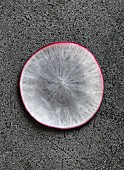 A slice of radish on a grey background (close-up)