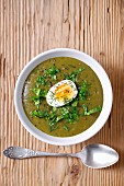 Sorrel soup with a hard boiled egg