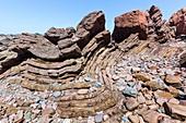 Folded rocks on coast