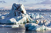 Icebergs from surging glacier, Svalbard