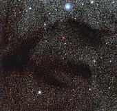 Dark nebula LDN 1768, optical image