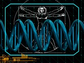 DNA and Vitruvian man, illustration