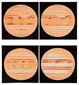 Jupiter between February and June 1897