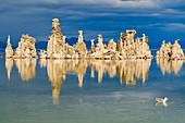 Tufa formations, Mono Lake, California, USA
