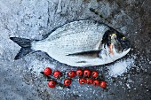 Fresh sea bream next to cherry tomatoes and salt