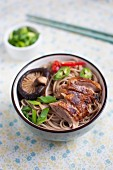 Duck noodle soup with vegetables and oriental spices (Asian food)