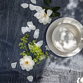 An empty white tea cup beside white rose petals (top view)