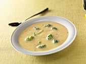 Cheddar cheese soup with broccoli