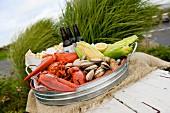 Seafood, Maiskolben und Getränke auf Metalltablett an Steg