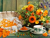 Still life with marigold tea, marigold flowers, herbs, and dried marigold petals