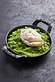 A poached egg on pea puree