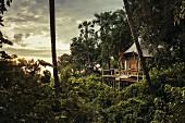 Baumhaus im Kwetsani Camp, Okavango-Delta, Botswana, Afrika