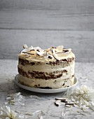 Coconut cake with coconut chips