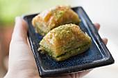 A hand holding a tray of pistachio baklava