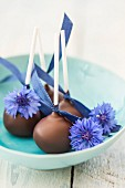Cake pops with cornflowers