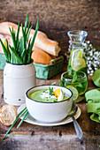 Frühlingszwiebelcremesuppe mit gekochtem Ei