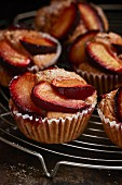 Plum muffins against a dark background