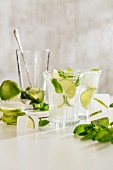 Mojito in a Glass with Ice, Mint and Lime