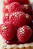 Raspberry tart sprinkled with gold dust (close up)