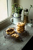 Chocolate chip cookies on a vintage cooling rack near a window