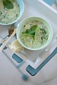 Parmesan soup with herbs