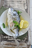 Poached dorade with lemon and mint