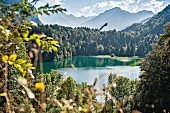 The Freibergsee lake in Oberstdorf with the ski jump in the background, Bavaria, Allgäu, Germany