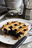 Blueberry tartlet with a dough lattice