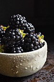 Fresh blackberries in a ceramic bowl