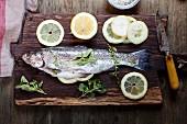 Salmon stuffed with lemon and herbs, ready to roast