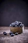 Blueberries in a metal bowl, black background