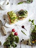 Open sandwiches with avocado, cucumber slices and wild herbs
