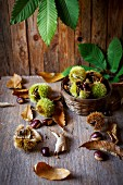 Chestnuts on a wooden background