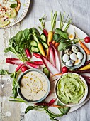 Quails eggs, radish, chicory, asparagus crudite with smoked trout and lemon dip and broad bean and pea dip