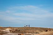 Petrified forest, Arizona, US