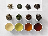 A tea tasting