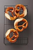 Pretzels on a cooling rack on a dark background