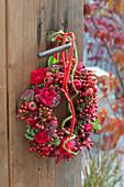 Roter Herbstkranz mit Rosa ( Rosen, Hagebutten ), Malus ( Zieraepfeln )