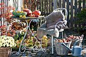 Herbstterrasse mit Malus ( Aepfeln ) und Pyrus ( Birnen ) Koerben