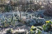 Gefrorener Gemüse- und Kräutergarten mit Grabgabel und Schubkarre