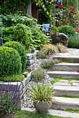 Treppe fuehrt zur ueberdachten Terrasse