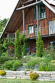 Hanggarten abgestuetzt mit Trockenmauer, Sedum ( Fetthenne ),